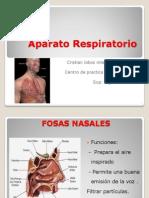 Fisiologia Interno Cristian Lobos Freire