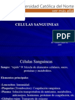 Histologia - 06 - Celulas  sanguineas.27.04.09