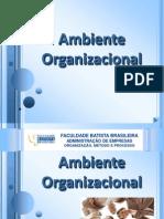 seminrioambienteorganizacional-100508080139-phpapp01