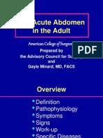 Acute Abdomen PRESENTATION (Ingles)[1]