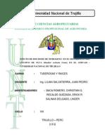 Informe de Yuca Tuberosas 1