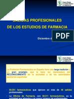 Salidas_profesionales