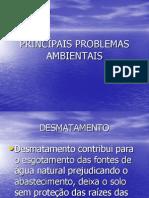 Apresentação Problemas Ambientais