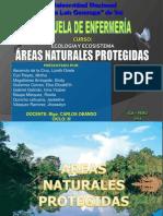 Semana Xiii Areas Naturales Protegidas