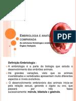 Embriologia e Anatomia Comparada