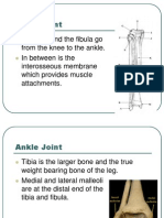 Ankle Power Point (1)