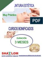Acupuntura Estetica PDF