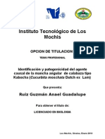 Tesis Anael Correcta 2013-Abril
