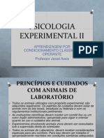 Psicologia Experimental II Slide