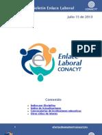 EnlaceLaboral DisciplinaTecnologia Julio-2013-072013 (1)