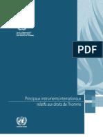 Principaux instruments internationaux relatifs aux droits de l'homme (OHCHR – 2006)