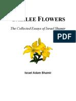 Galilee Flowers - Israel Shamir