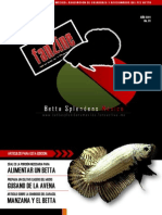 Fanzine BSM 01.pdf
