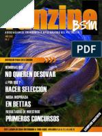 Fanzine BSM 2.pdf