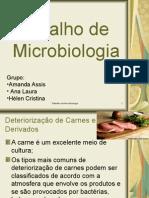 Trabalho de Microbiologia