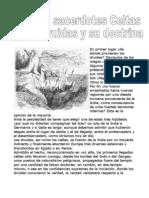 Druidas, Sacerdotes Celtas