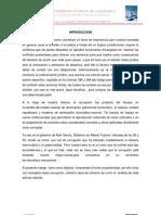 DELITOS COMETIDOS POR FUNCIONARIOS O SERVIDORES PÚBLICOS terminado (Autoguardado)