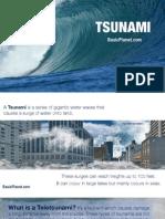 Tsunami - Natural Disaster