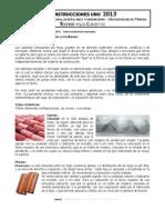 techo-cubierta.pdf
