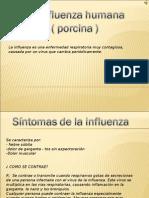 1A - Influenza[1] Tarea 1 de Hernan