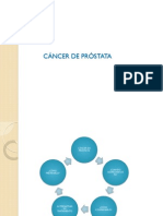 Cancer de Prostata Usmp 2013