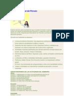 Programa Iniciación Musical del Párvulo.docx