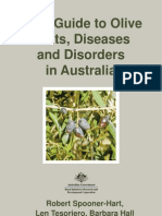 Olive Pests Disorders