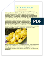 Basics of Jack Fruit