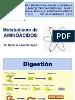 Metabolismo de Aminoc3a1cidos