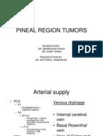 Pineal Region Tumors 2011