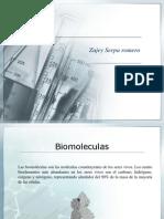 Biomoleculas (Proteinas,carbohidratos)