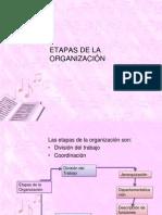 ETAPAS DE LA ORGANIZACIÓN
