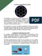 Informe de Bioquimica - Supramoleculas