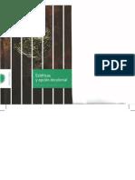 Esteticas y Opcion Decolonial Walter Mignolo y Pedro Pablo Gomez Editores