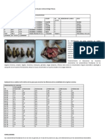 practica de genetica (resultados).docx