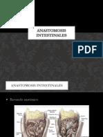 6.- Anastomosis Intestinales