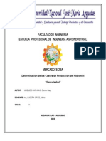 INFORME N°2 MEERCADOTECNIA-costos de produccion del MEZCLIMAX..docx