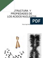 3-1A- REVISION Estruct & Propiedades Ac Nucleicos -2013