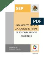 Lineamientos Aplicacion Horasdefortalecimento Academico