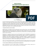 Técnicas de Observação de Aves de Rapina Diurnas