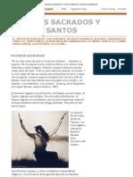 Payasos Sacrados y Tontos Santos_ Payasos Sagrados