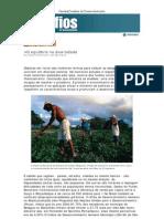 O Equilibrio Na Diversidade - Eliana Simonetti - Revista Desafios Do to