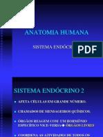 07 - SISTEMA ENDÓCRINO fpp