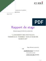 Rapport de Stage CBI 12