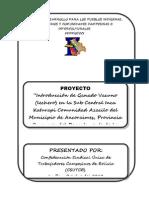 proyecto VACUNOS