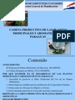 Presentacion Cadena Productiva Plantas Medicinales 2011