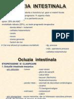 Curs 11- Ocluzia Intestinala