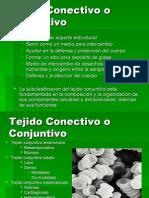 TEJIDO CONJUNTIVO -> Futura Médica