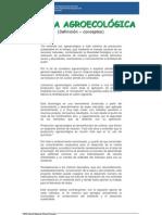 INTA Huerta Agroecológica de autosustento