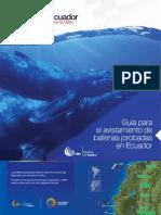 Guía de Avistamiento de Ballenas Jorobadas en Ecuador